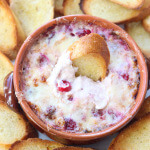 Thanksgiving Countdown: White Cheddar and Cranberry Dip