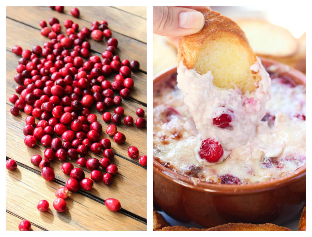 All you need is 4 ingredients and 30 minutes to make this holiday dip that is an ultimate crowd pleaser! Super gooey and super yummy! | littlebroken.com @littlebroken #thanksgiving #dip #cranberrysauce