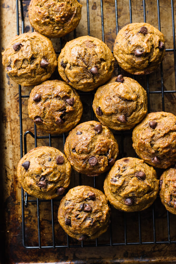 Healthy Chocolate Chip Pumpkin Muffins - made with coconut oil, white whole wheat flour, and sweetened with honey. These are by far the BEST healthy pumpkin muffins | littlebroken.com @littlebroken