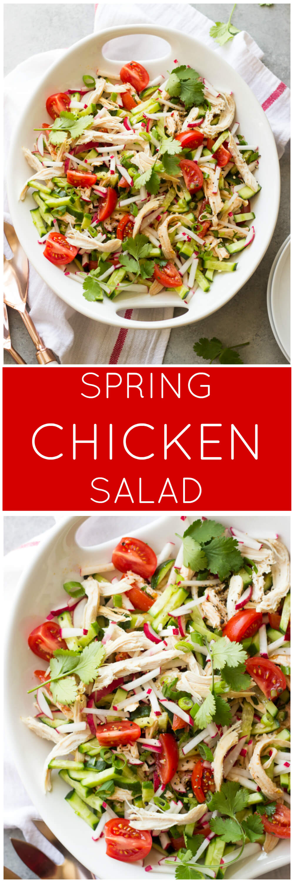 Spring Chicken Salad - simple fresh ingredients tossed in a zesty vinaigrette | littlebroken.com @littlebroken
