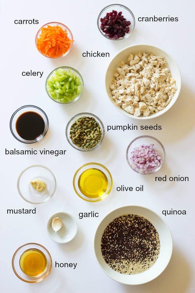 Chicken Quinoa Salad with Balsamic Dressing - ultimate fall salad with chicken, quinoa, crunchy veggies, cranberries, and pumpkin seeds | littlebroken.com @littlebroken