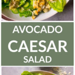 Long image of avocado caesar salad of a close up salad