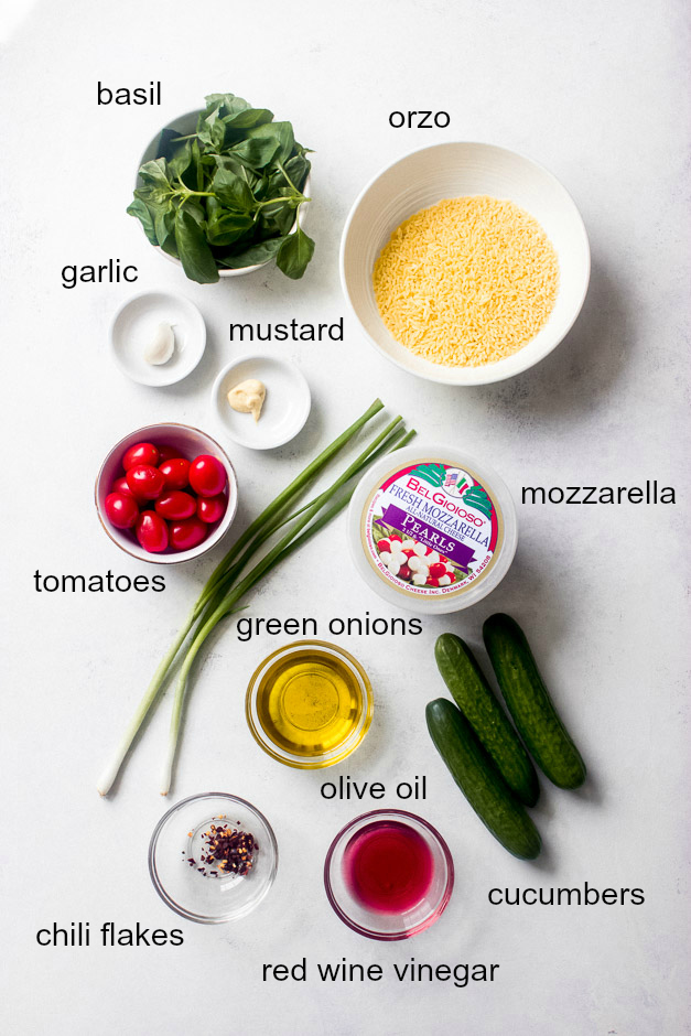 Ingredients for orzo pasta salad