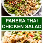 spicy chicken salad with thai flavors