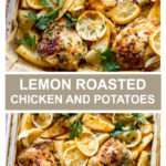 lemon roasted chicken and potatoes