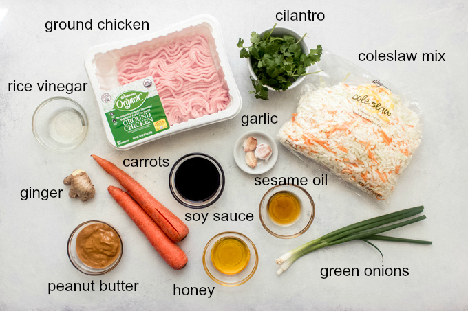 ingredients for chicken and cabbage with carrots